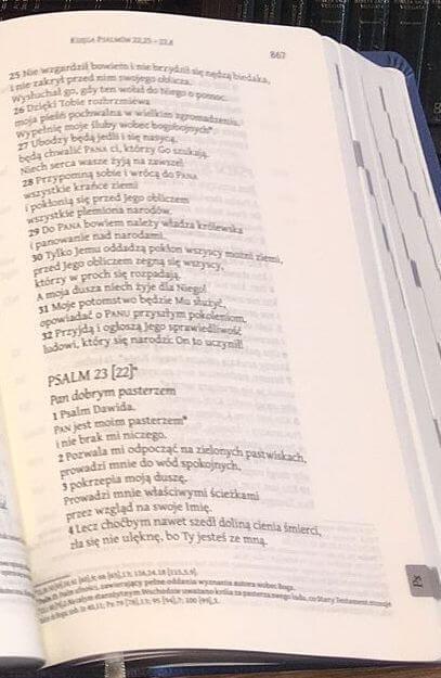 Biblia Ekumeniczna - Psalmy